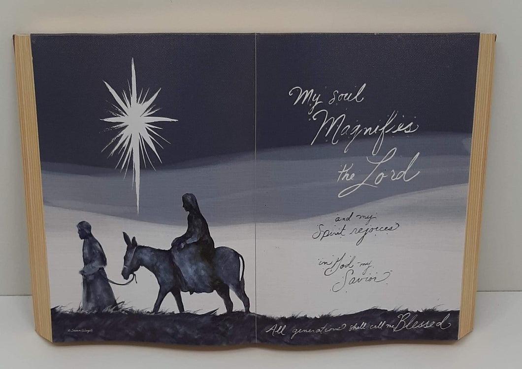 Fiber Optic Night Nativity (Lights Up)