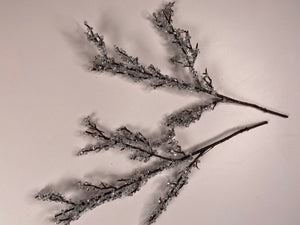 Ice crystal covered branches