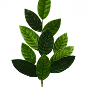"Velvet Magnolia Leaf Spray 25""H"
