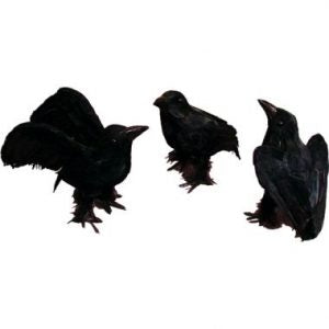 "6"" Black Crows"