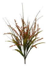 Load image into Gallery viewer, Foxtail Grass Bush x 12