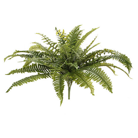 Boston Fern Draping: Green, 8 x 34 inches