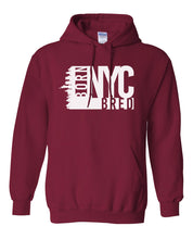 Load image into Gallery viewer, cardinal New York City hoodie