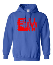 Load image into Gallery viewer, royal chi-town Chicago born and bred hoodie