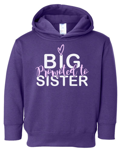 promoted to big sister toddler hoodie