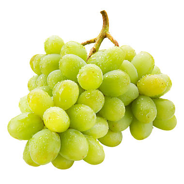 Grape Seedless Green 1lb. ***ON SALE***