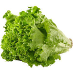Lettuce Green Leaf ea.