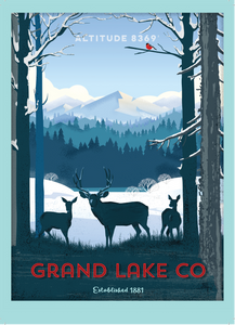 Grand Lake Colorado Postcard - Winter