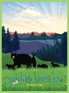 Grand Lake Colorado Poster - Spring