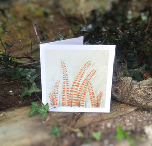 Crocosmia Card