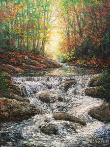 Autumn Light Waterfall 12 X 16 inch original oil painting