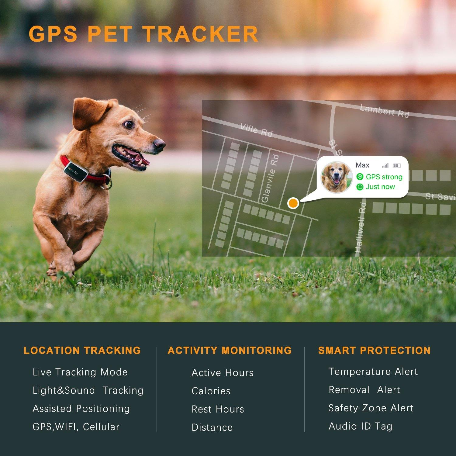 TECKNET Pawfit GPS Pet Tracker & Activity Monitor, Smarter Pet Care