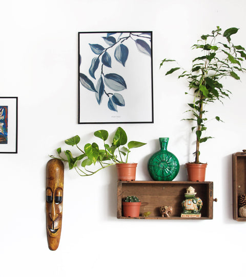 Decoration: use photos to spruce up your home!