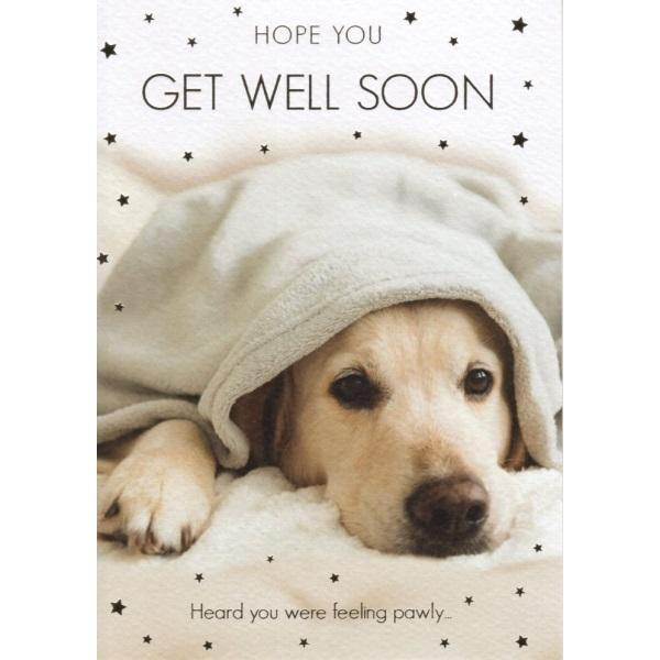 Heard You Were Feeling Pawly Get Well Card
