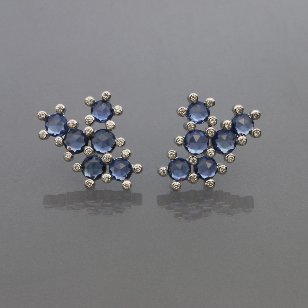 Blue Sapphire Succulent Earrings