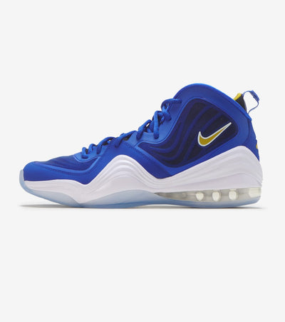 "Nike  Air Penny V ""Blue Chips""  Multi - 537331-402 