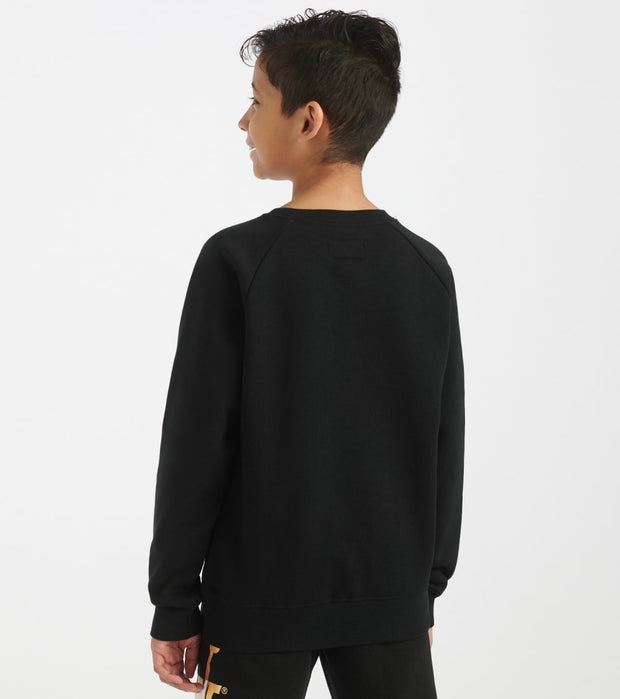Jordan  Boys 8-20 Jumpman Trophy Crew Sweatshirt  Black - 956606-023 | Jimmy Jazz
