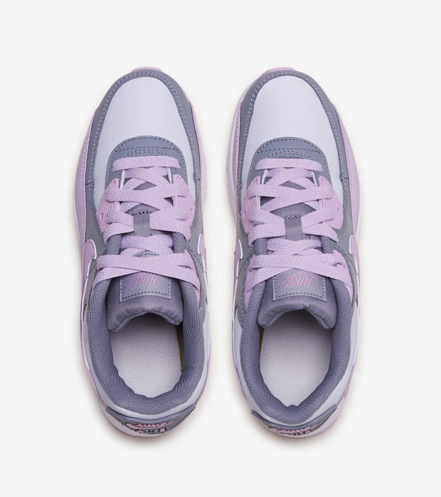 Nike  Air Max 90  Purple - CD6867-002 | Jimmy Jazz
