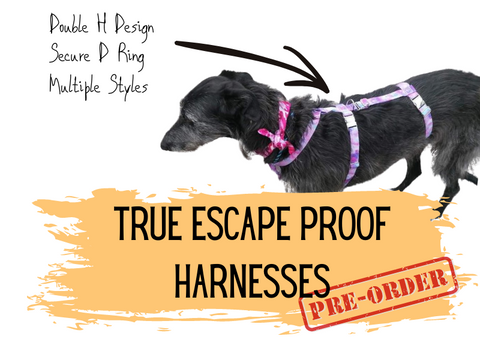 True Escape Proof Harness - ActionForDogs
