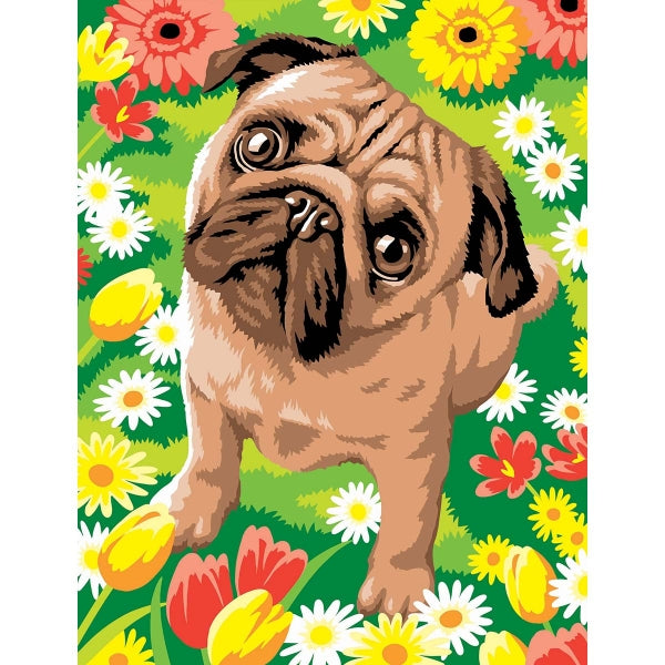 Paint-by-numbers Pug