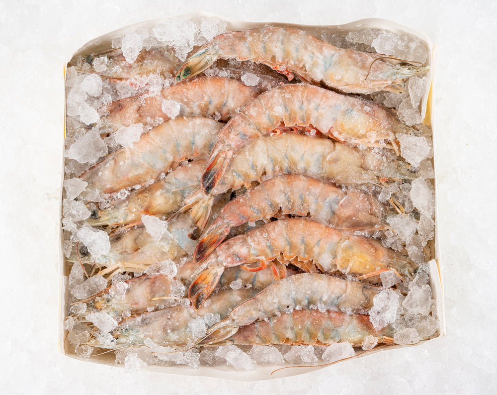 "Load image into Gallery viewer, Wild Gulf Shrimp ""Heads on"" (4lbs)  $15.00lb"