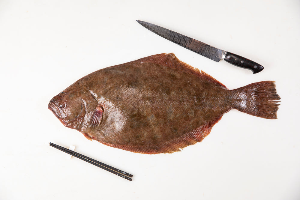 "Fresh Wild Maine Fluke (6lb Whole Fish) $15.00lb  ""Sushi Chefs Favorite"""
