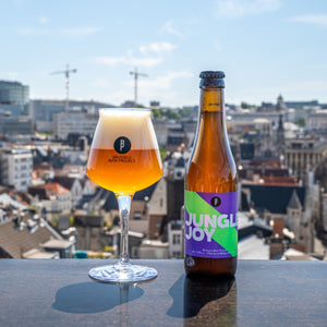 ALL STARS PACK - FREE SHIPPING 🇧🇪 - Brussels Beer Project