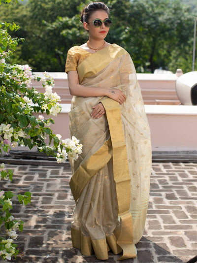 Duck Egg Green Kota Silk Chanderi Saree