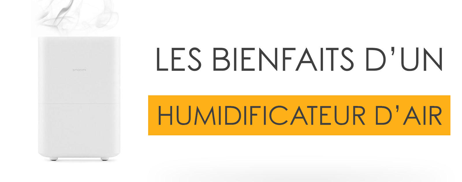 Les Bienfaits d'un Humidificateur d'air