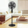 Ventilateur <br> Black Air