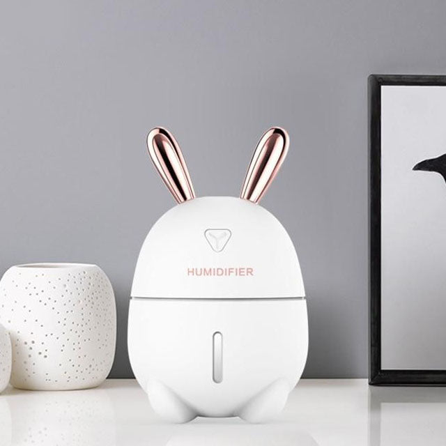 Humidificateur d'air Pour Asthmatique | Le Purificateur