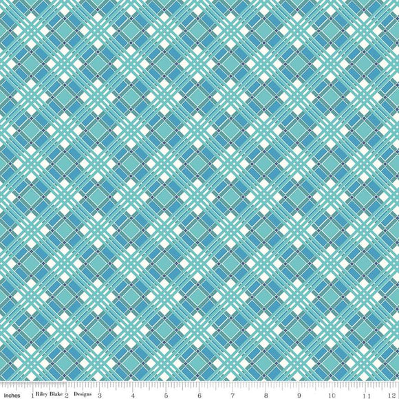 C10217 PLAID BLUE/Flea Market/by Lori Holt for Riley Blake Designs