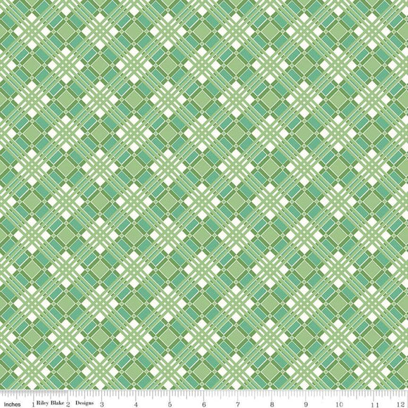 C10217 PLAID GREEN/Flea Market/by Lori Holt for Riley Blake Designs