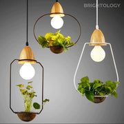 Geometrical Pendant Planter Lamp