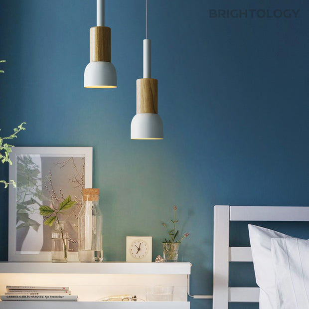 Matte Pastel Pendant Lamps with Wooden Accent