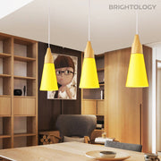 Wooden Accented Pendant Lamp