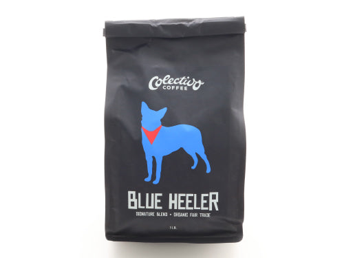 Coffee Blue Heeler
