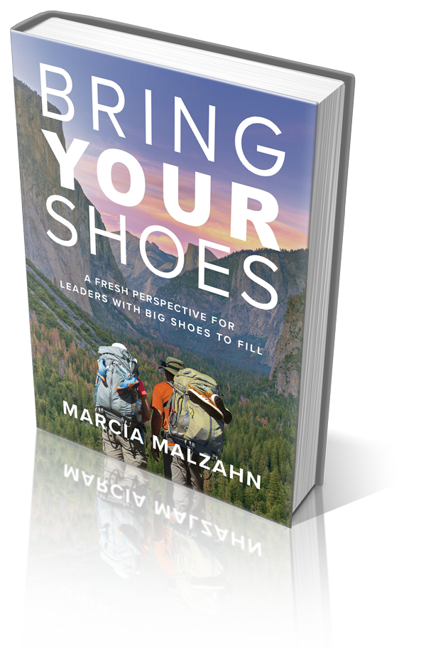 Bring Your Shoes Book Cover