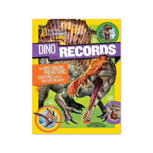 NGK Dino Records