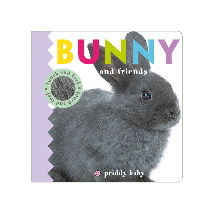 Touch & Feel : Bunny & Friends
