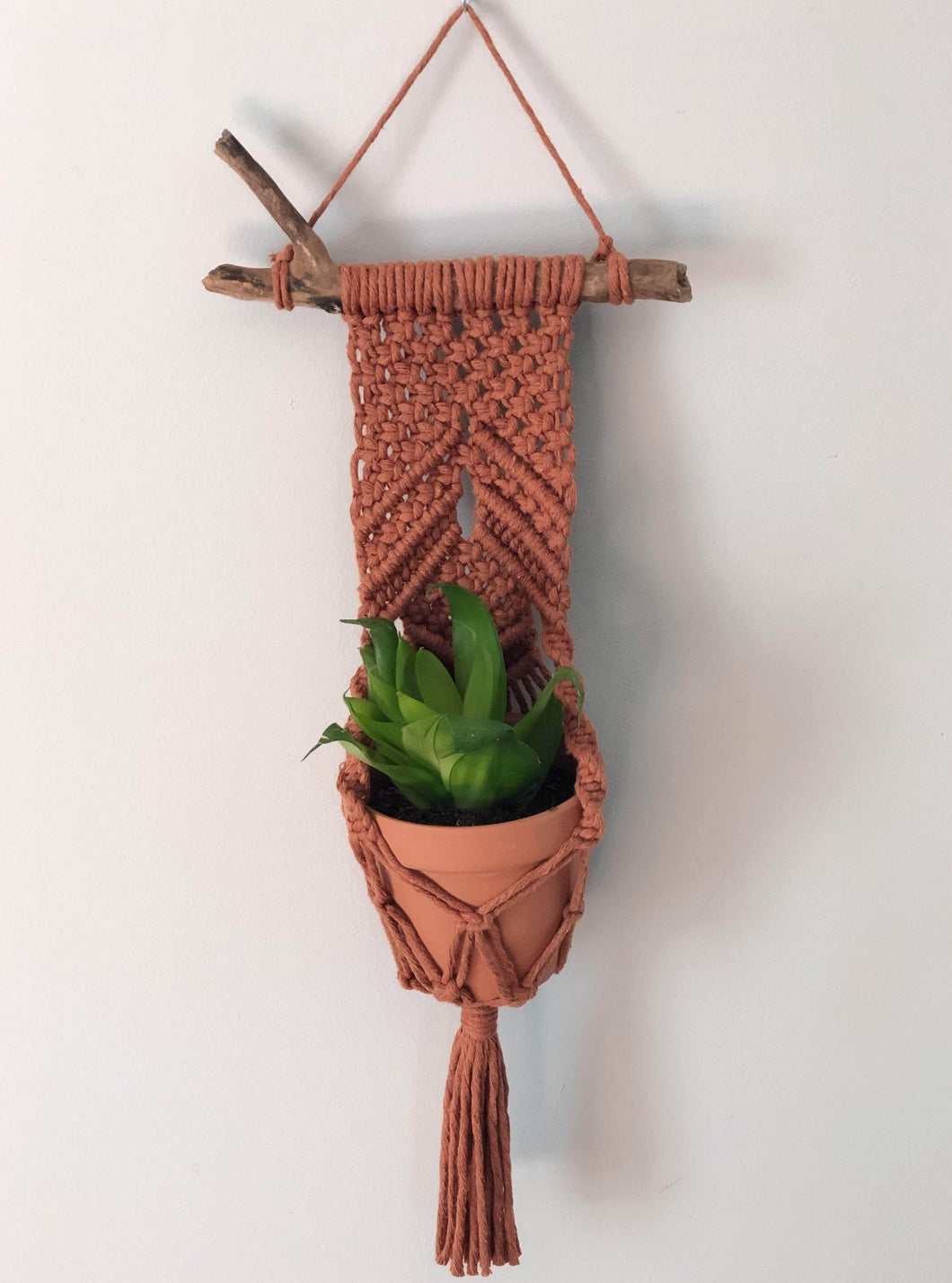 Wall Plant Hangers