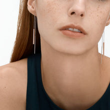 Load image into Gallery viewer, Skagen Elin Earrings