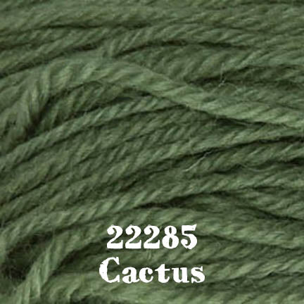 deluxe chunky 22285 cactus