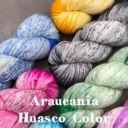 Araucania Huasco Color main