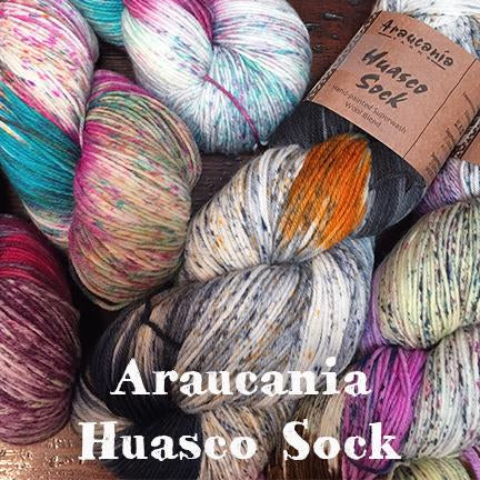 Araucania huasco sock main