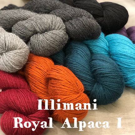 Illimani Royal Alpaca I