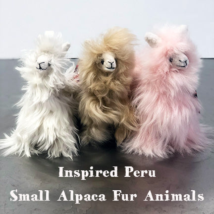 Small Alpaca Fur Animal