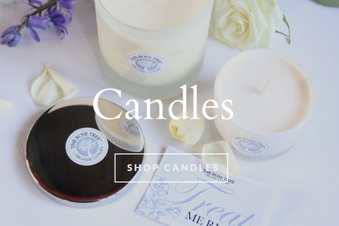 Luxury Natural Wax Candles - Shop Now