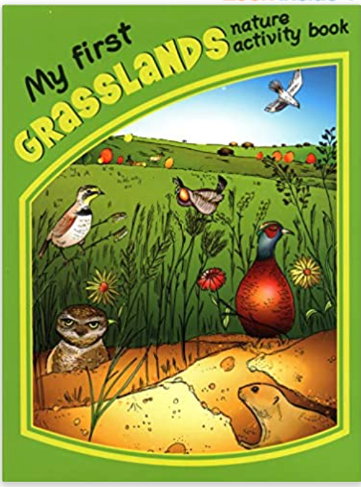 Children Nature Activity Books
