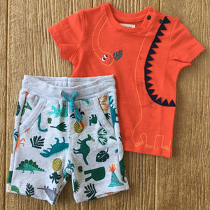 CAT 10152  77 Orange Tee with Dino